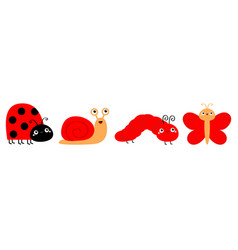 red insect icon set line ladybug butterfly vector image