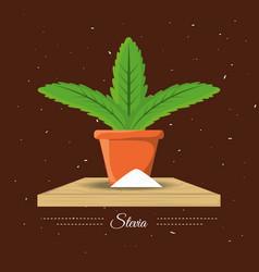 stevia natural sweetener plant and organic product vector image