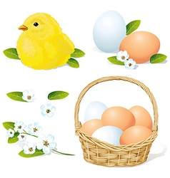easter and spring element vector image
