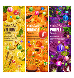 Color diet fruits and vegetables vitamin food vector