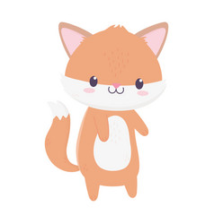 cute fox animal cartoon isolated icon vector image