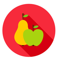 fruits circle icon vector image