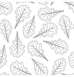 hand drawn oak leaves isolated on white background vector image