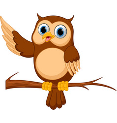 Happy owl cartoon vector