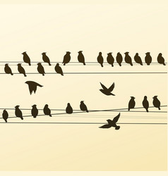 Silhouettes of a flock of birds vector