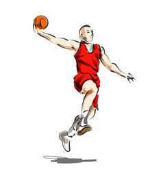 color line sketch basketball player vector image