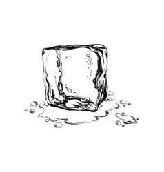 hand draw ice cuben vector image