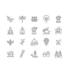 alternative therapy line icons signs set vector image