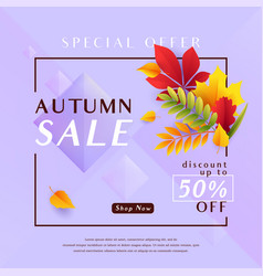 fashion violet autumn sale vector image