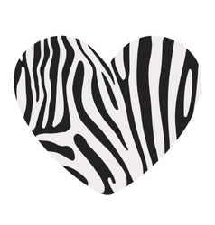 Heart shape painted in the coloring Zebra vector