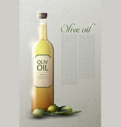 natural olive oil realistic template vector image