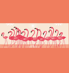 pink beautiful flamingo flock birds vector image