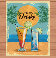 tropical cocktail poster vector image