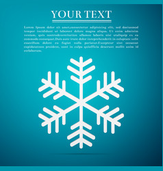 Snowflake flat icon on blue background vector