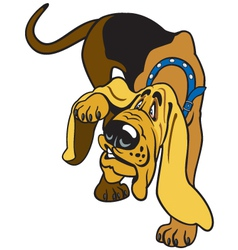 cartoon bloodhound vector image
