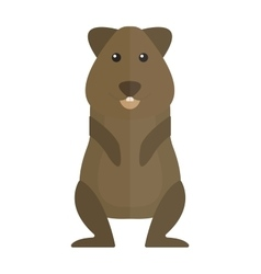 Cute standing brown hamster cartoon flat vector image