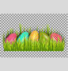 easter eggs background with fresh green grass vector image