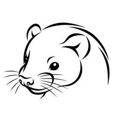 line ink ferret head simple vector image