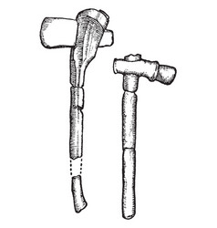 Neolithic implements stone and horn ax and hammer vector