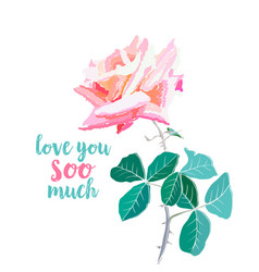 pink rose watercolor love you soo vector image