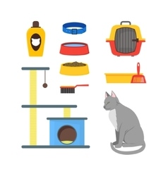 Cartoon Cat Equipment Set vector image