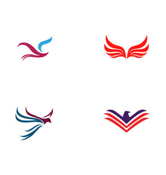 bird and wing logo template vector image