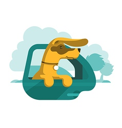 dog is looking out car window vector image