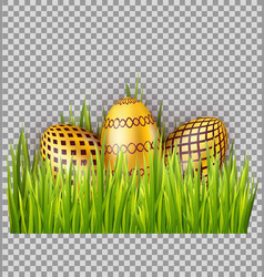 golden easter eggs on green grass isolated on vector image