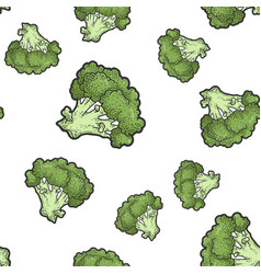 green broccoli seamless pattern sketch vector image