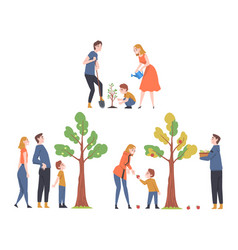People characters watering tree and picking fruits vector