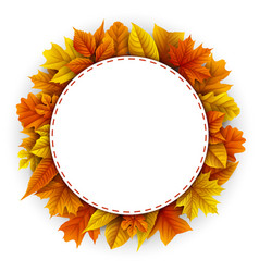 round frame autumn leaves white background vector image