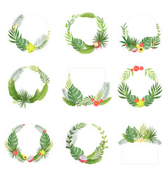 tropical leaves and flowers elegant frame vector image