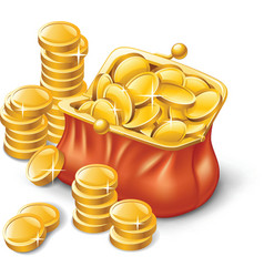 wallet full coins vector image