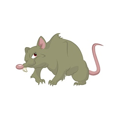 Big rat vector