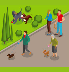 dog walking isometric vector image