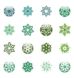 Leaves circle ecology floral design vector
