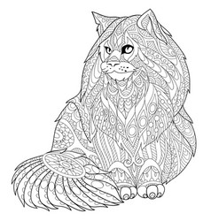 Maine coon cat adult coloring page vector