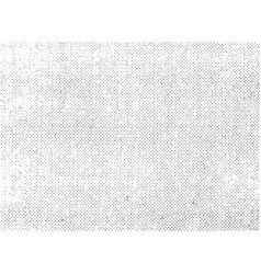 monochrome canvas retro texture vector image