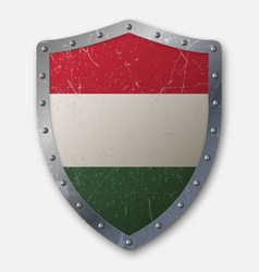 Old shield with flag vector