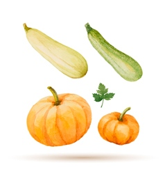 Set of watercolor vegetables vector