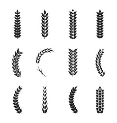 Wheat ears icons oat and wheat grains vector