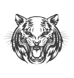 roaring tiger face vector image