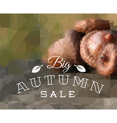 Autumn sale retro poster vector
