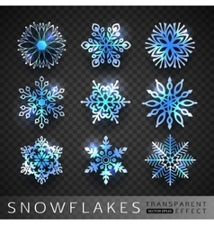 Collection of winter blue snowflakes icons vector