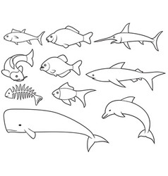 fish thin line icons set vector image