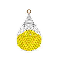 Fishing net and coins isolated fishnet big catch vector