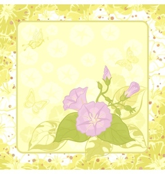 Floral background ipomoea vector