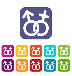 Gender symbol icons set flat vector