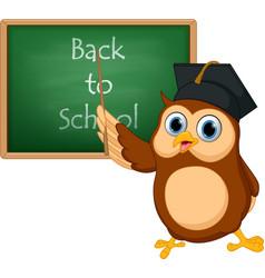 owl cartoon with chalkboard vector image vector image