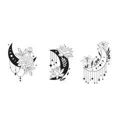 set of blooming moons with decorative elements vector image